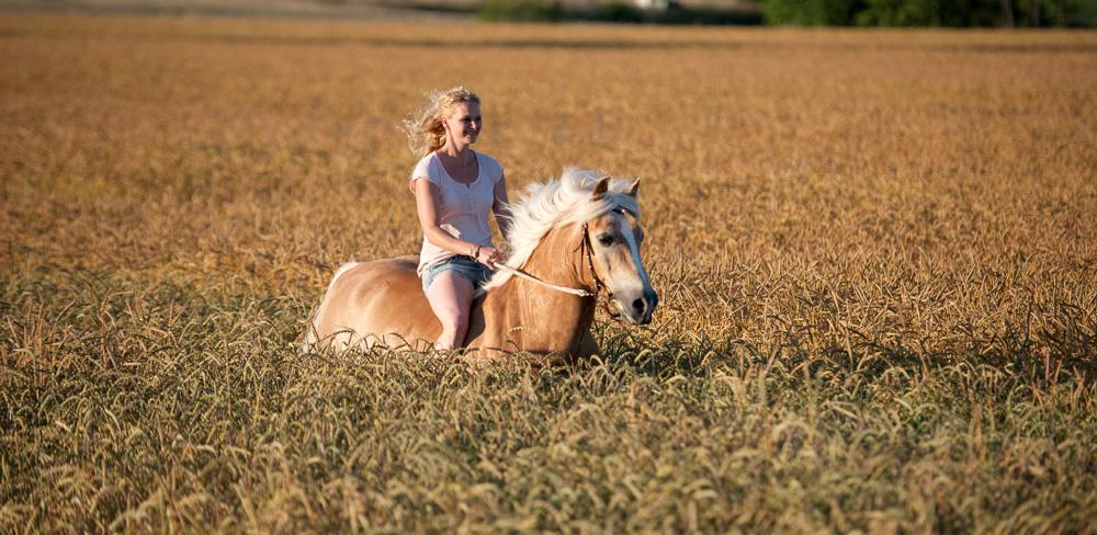 Horsemanship_Claudia_Oppel_Nuernberg_Trainerin