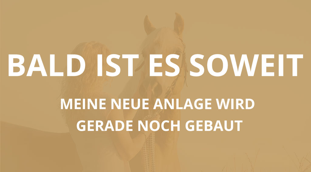Claudia-oppel-horsemanship-trainer-aktivstall